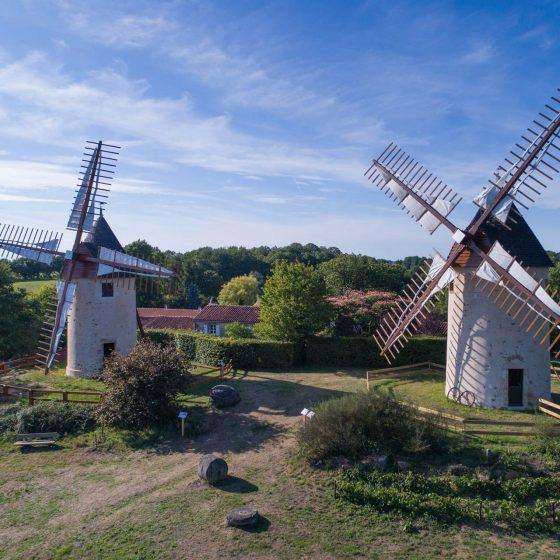Les moulins du Terrier Marteau vue du haut
