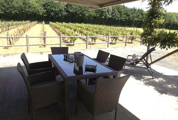 Terrasse gite avec vue vigne